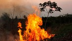 Amazon fires burn in Brazil (ANSA)