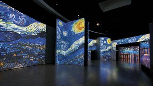 Mostra Van Gogh Alive - The Experience (ANSA)