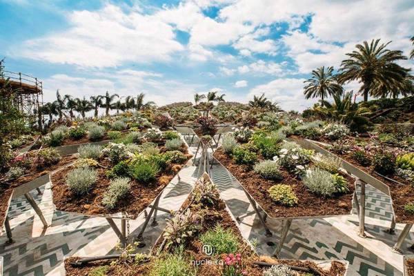 Inaugurata la prima edizione della biennale Radicepura Garden Festival VIDEO