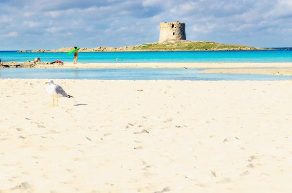 Un rimedio drastico, per salvare la più bella spiaggia di Stintino