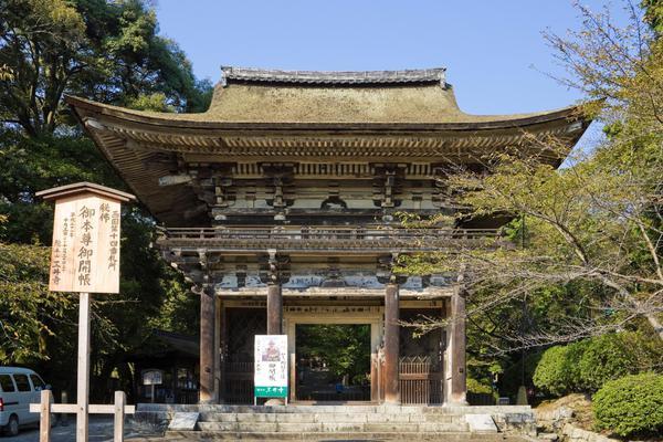 Templi Giappone © ANSA