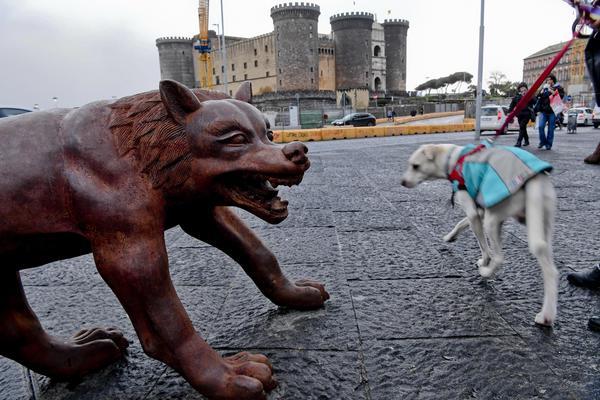 I lupi di Liu Ruowang 'invadono' piazza Municipio