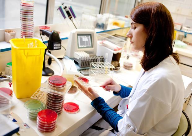 CNR Napoli: ecco Faber, il test per scoprire 244 allergie