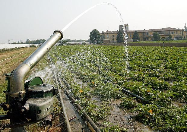 Il 22 marzo è la Giornata mondiale dell'acqua