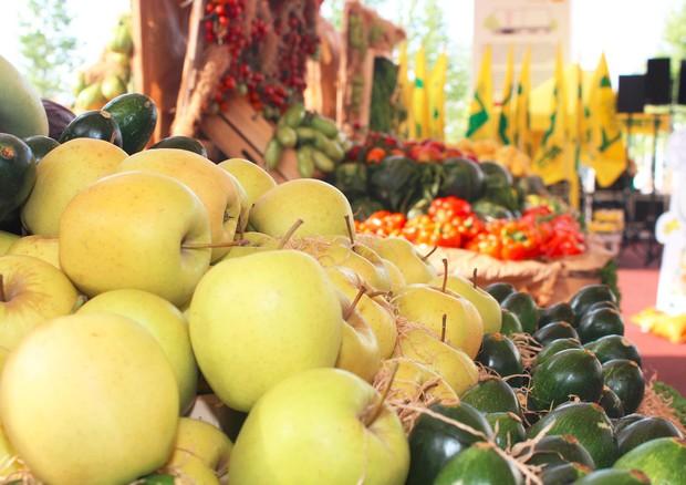 Frutta e verdura © ANSA