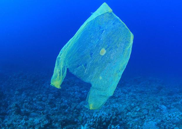 L'invasione della plastica in mari e oceani è il tema della Giornata mondiale dell'Ambiente 2018 (fonte: MichaelisScientists) © Ansa