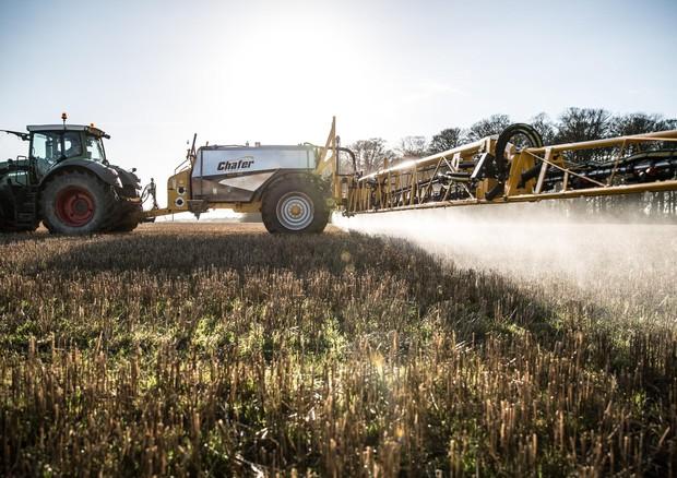 Pesticidi: glifosato non è cancerogeno secondo OMS e FAO