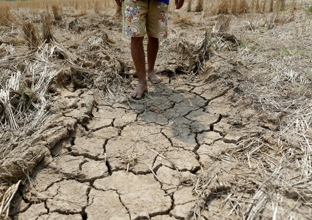 Thailand hit by worst drought in decades © EPA