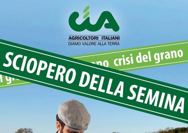 Coldiretti, venerdì 29 luglio giornata in difesa del grano italiano
