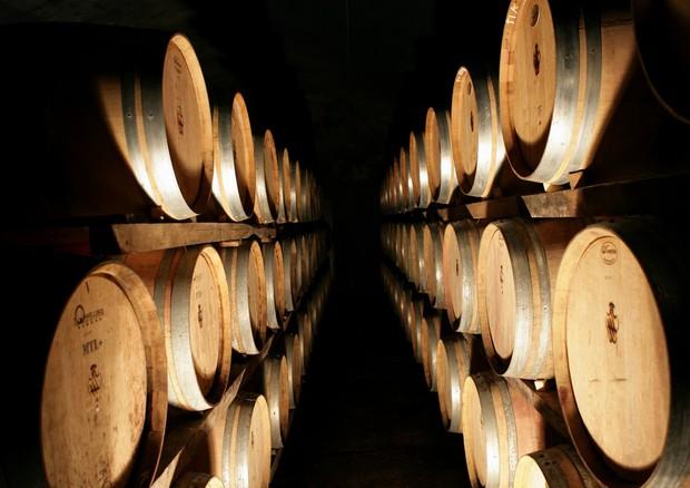 Testo unico del vino, piena soddisfazione delle organizzazioni della filiera vitivinicola