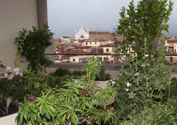 In Manovra U0027bonus Verdeu0027 Per Terrazzi E Giardini   Istituzioni   ANSA.it