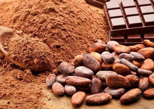 Cacao e Omega 3 sono gli amici della vista © ANSA