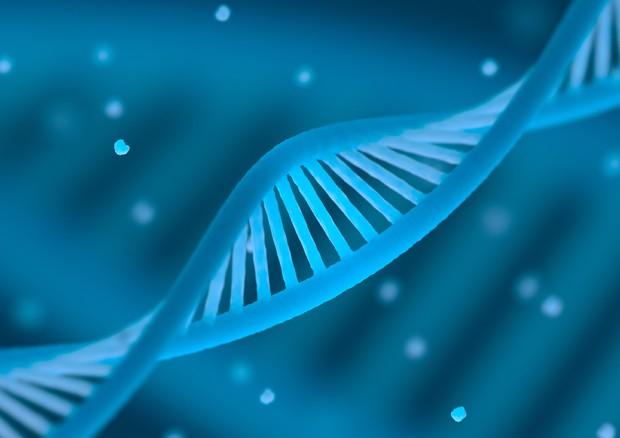 Bene la terapia genica per la malattia dell''olio di Lorenzo' © Ansa