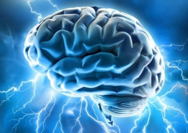 Un'interpretazione artistica del cervello umano (fonte: Allan Ajifo) © Ansa