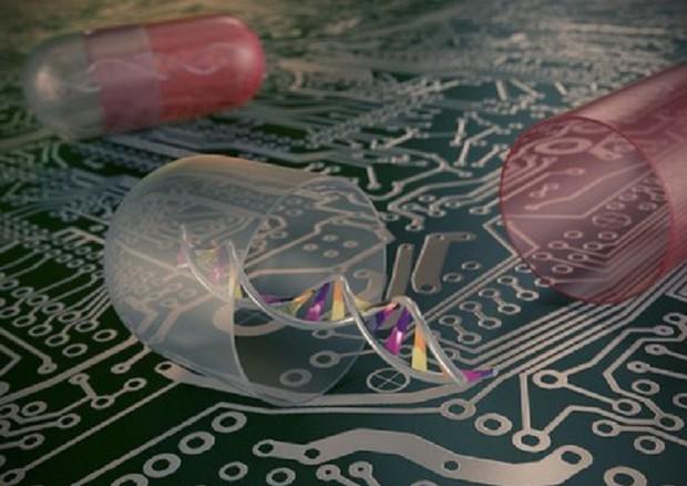 Realizzato il primo computer a Dna che valuta gli anticorpi del sangue per un rilascio intelligente dei farmaci (fonte: ICMS Animation Studio) © Ansa
