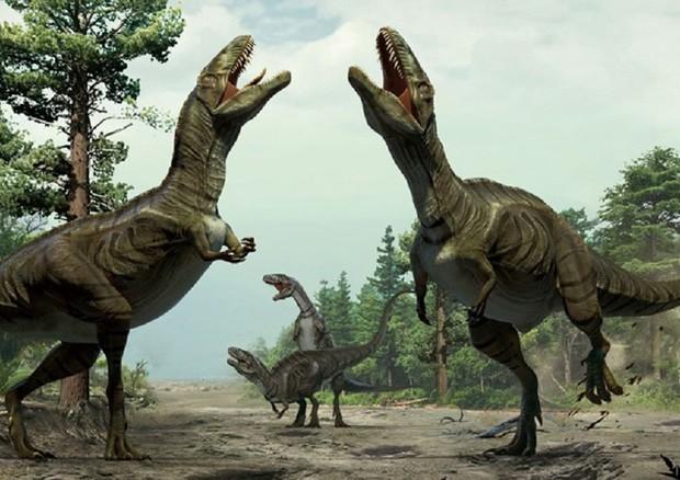 Sulle montagne d'Abruzzo l'impronta del più grande dinosauro bipede italiano