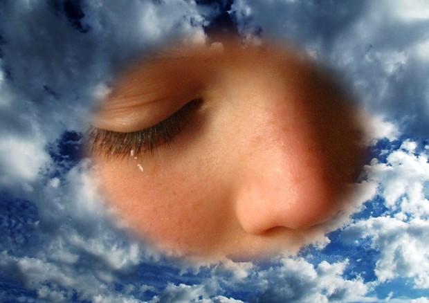 La forma del naso modificata e influenzata dal clima e dall'attrazione sessuale
