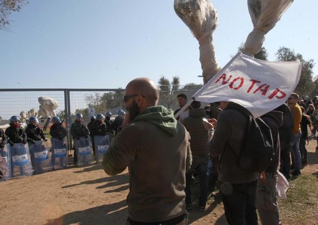 Gasdotto Tap, il Tar del Lazio sospende l'espianto degli ulivi