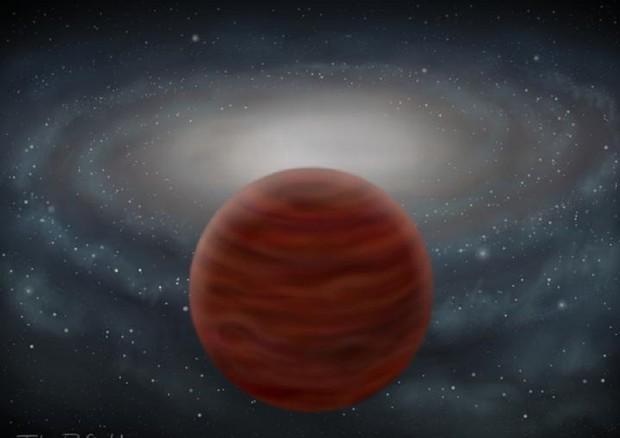 Scoperta la stelle più 'pura', 99,99% di elio e idrogeno (fonte: John Pinfield) © Ansa