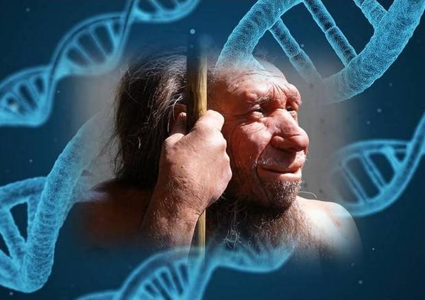 Nel nostro Dna lo zampino dei Neanderthal