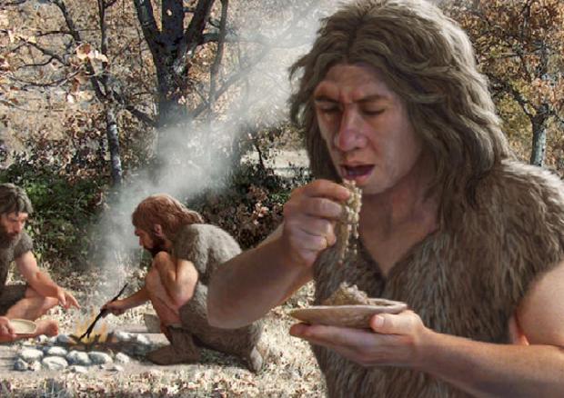 Gli antibiotici e le aspirine dei Neanderthal: scoperte le cure del Paleolitico