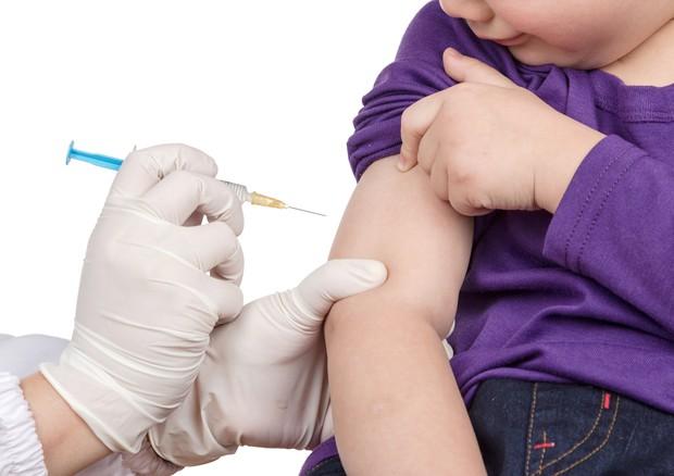 Genitori a Grasso,ddl vaccini perde pezzi e vince chi urla © Ansa