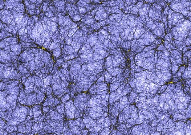 Una sezione dell'universo virtuale (fonte: Joachim Stadel, UZH) © Ansa