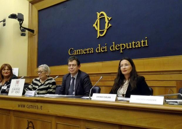 Donne del vino formazione smart per aumentare donne nei for Canale camera dei deputati
