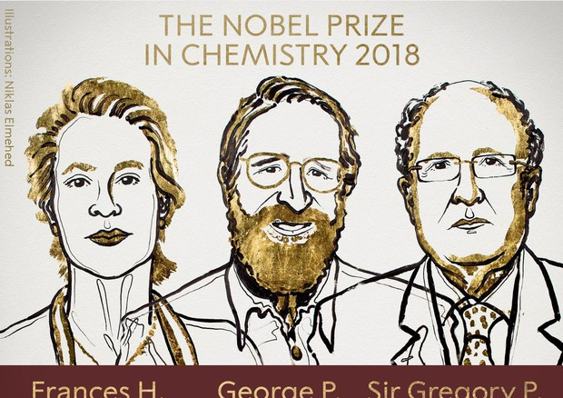 Arnold, Smith e Winter vincono il Nobel per la chimica 2018