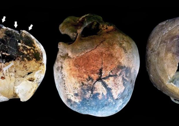 Crani trovati sull'antica spiaggia di Ercolano, esplosi a causa dela nube di gas caldissimi generata dall'eruzione del Vesuvio (fonte: Petrone et al/PLOS One) © Ansa
