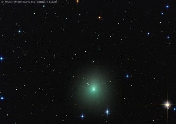 La cometa 46P/Wirtanen fotografata dall'astrofilo Rolando Ligustri (fonte: Ligustri, foto tratta dal sito della Uai) © Ansa