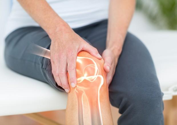Non solo protesi, la bio-ortopedia 'rigenera' le ossa con le staminali © Ansa