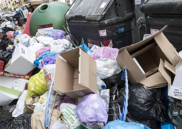 Accumulo di rifiuti a Roma © ANSA