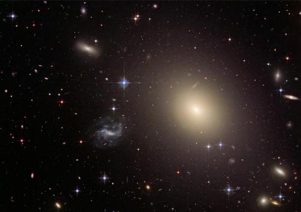 Rappresentazione artistica della galassia ESO325-G004 utilizzata dal telescopio Hubble come una lente d'ingrandimeno cosmica (fonte: NASA, ESA, Hubble Heritage Team (STScI / AURA) © Ansa
