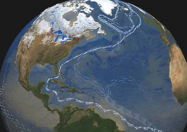 Le linee indicano la Circolazione Atlantica, il cui indebolimento corrisponde a temperature più elevate (fonte: NASA) © Ansa