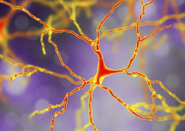 Siracusa, venerdì la XXV giornata mondiale dell'Alzheimer