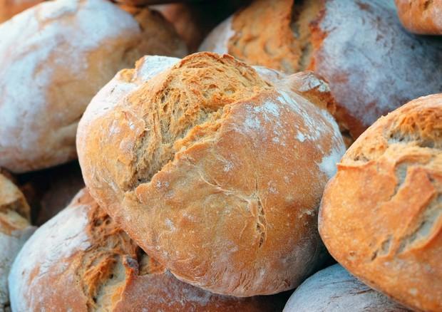 La crosta del pane invecchia le cellule della pelle