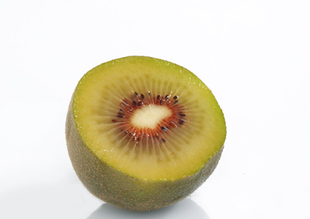 Nominated for FRUIT LOGISTICA Innovation Award 2019: Oriental red – Red Kiwifruit, Jingold spa, Italy © Ansa