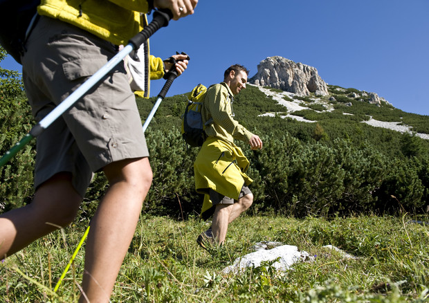 nordwalking sul Latemar in Val d'Ega CREDIT Val d'Ega (ANSA)