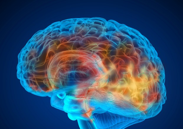 Terapia mirata migliora la sopravvivenza per tumore al cervello © Ansa