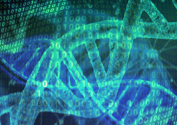 Una banca dati riunisce tutti i tratti genetici caratteristici di un organismo in buona salute (fonte: PIxabay) © Ansa