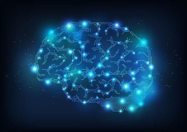 Nel cervello la mappa delle emozioni (fonte: Martin420, Wikipedia) © Ansa
