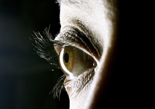 Identificati i geni dell'insonnia (fonte: Juliana Pinto) © Ansa