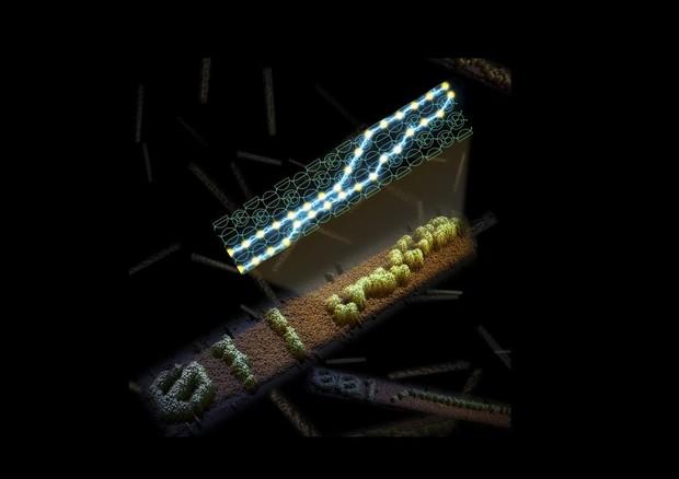 In alto il circuito fatto di Dna, in basso l'immagine ottenuta con il microscopio di un nastro di Fna auto-assemblato e sullo sfondo altre stringhe di codice fatte di Dna (fonte: Demin Liu and Damien Woods) © Ansa