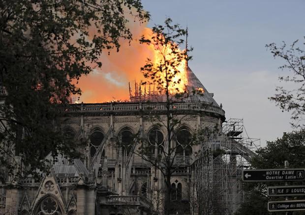 Parigi, piombo nel sangue di bimbo Dopo incendio Notre Dame - Salute Roma