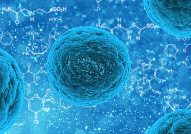 Rappresentazione grafica di cellule tumorali (donte: CC0 Public Domain) © Ansa