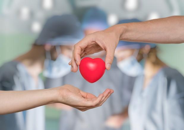Donazione organi: regolamento sul Sistema informativo trapianti