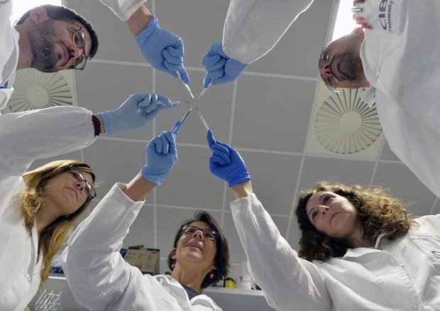 Il gruppo di ricerca del Cibio di Trieste che ha scoperto la tecnica capace di contrastare la fibrosi cistica (fonte: Alessandra Saletti, Alessio Coser, Università di Trento) © Ansa