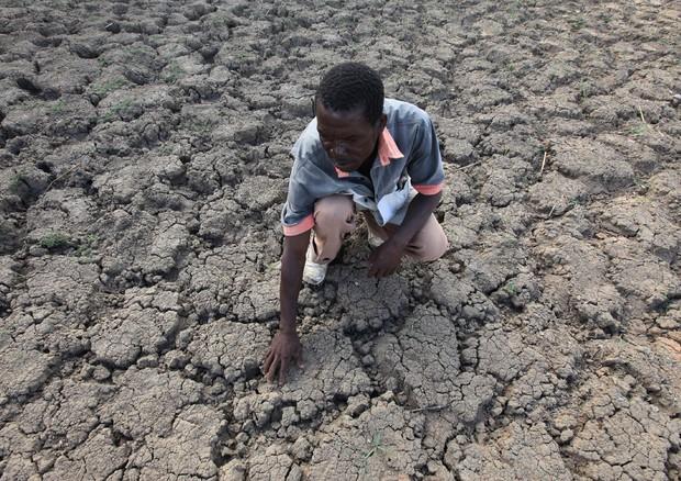 Fame e immigrazioni da riscaldamento globale: l'allarme dell'ONU