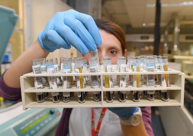 Manovra, rinnovati fondi per farmaci innovativi oncologici e non